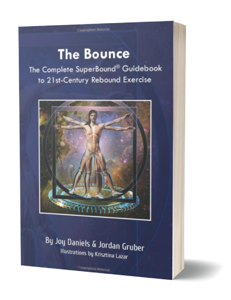 The Bounce Book Image